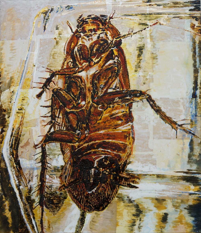 Cockroach in Jar / 瓶のゴキブリ