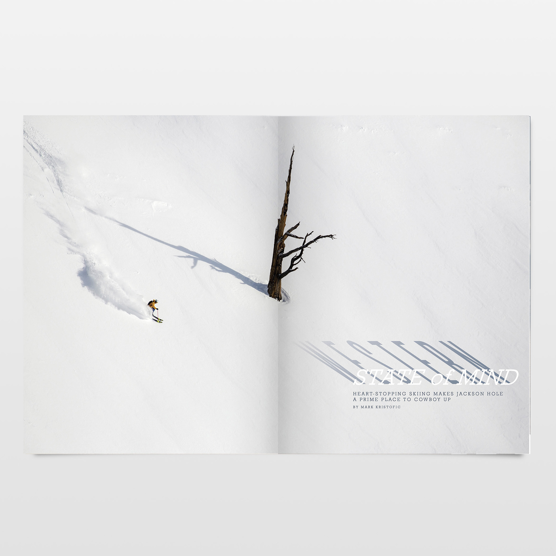 WINTER 2016   |   THE SPECIES ISSUE   | ART DIRECTION & DESIGN