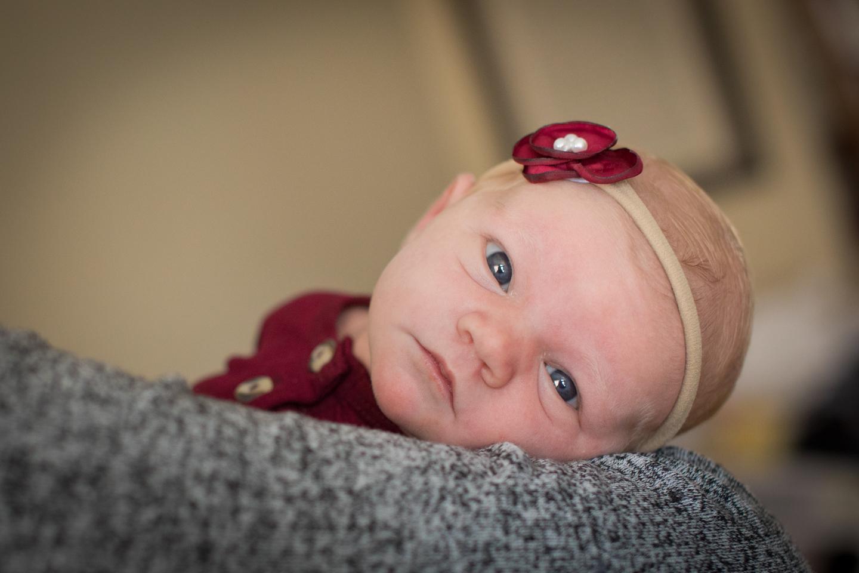 Newborn (5 of 33).jpg