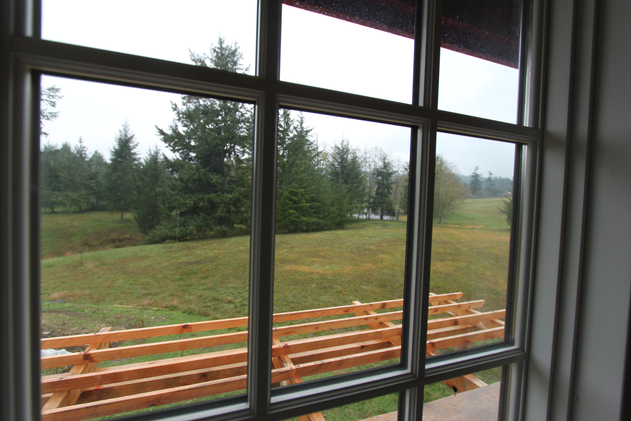 ladybug house lake view from bedroom
