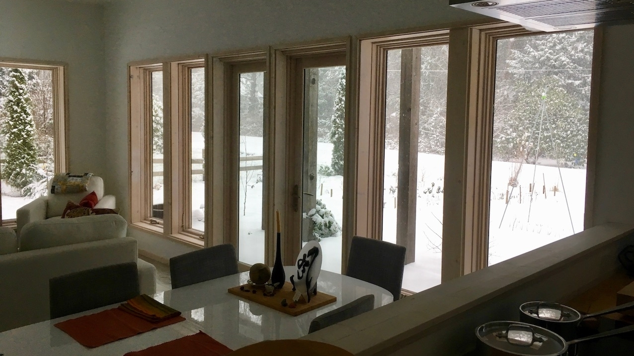 windows with a simple snowy view.jpg