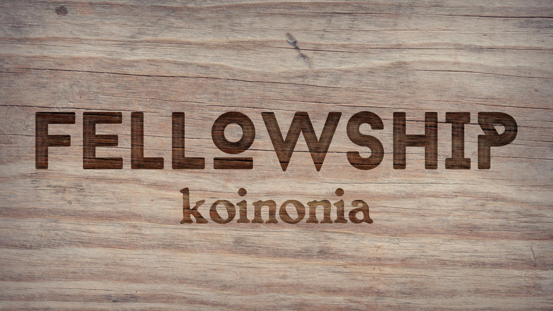 Fellowship Cover.jpg