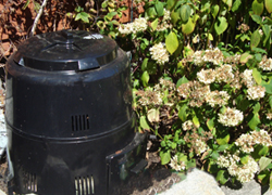 Township of Langley Backyard Composting