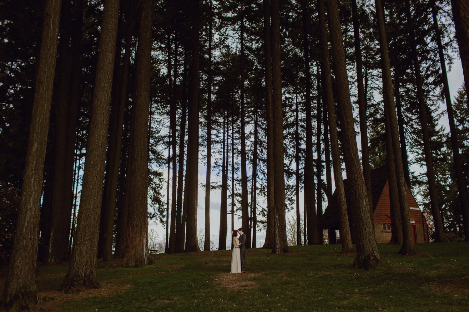 A photo of a wedding couple in a Portland Oregon forest
