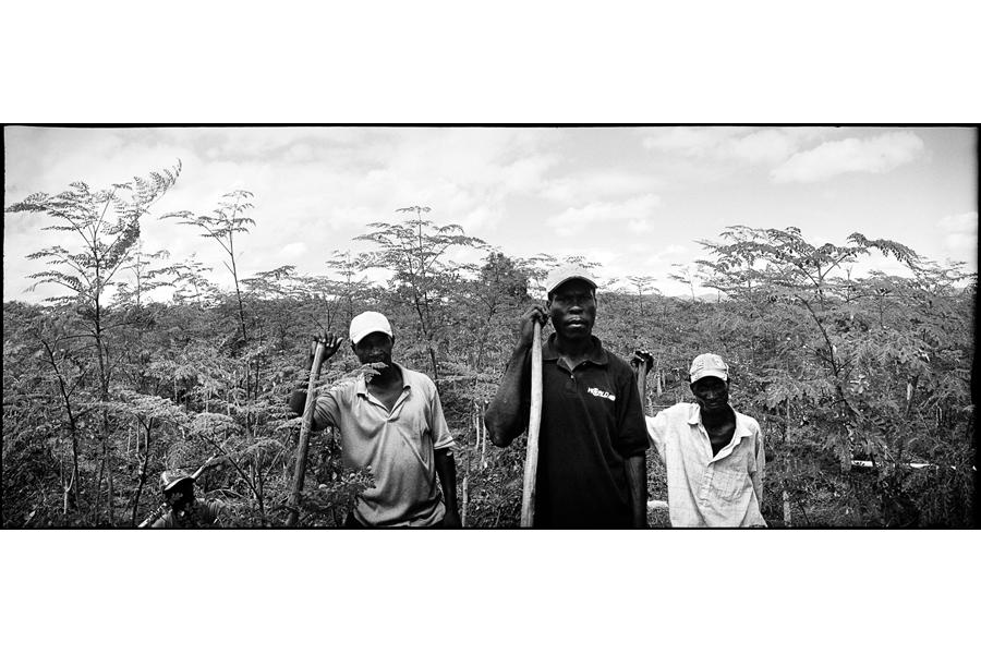 19_haiti08-113-19a.jpg