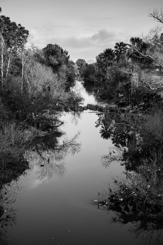 30_180311_la_river_8352.jpg