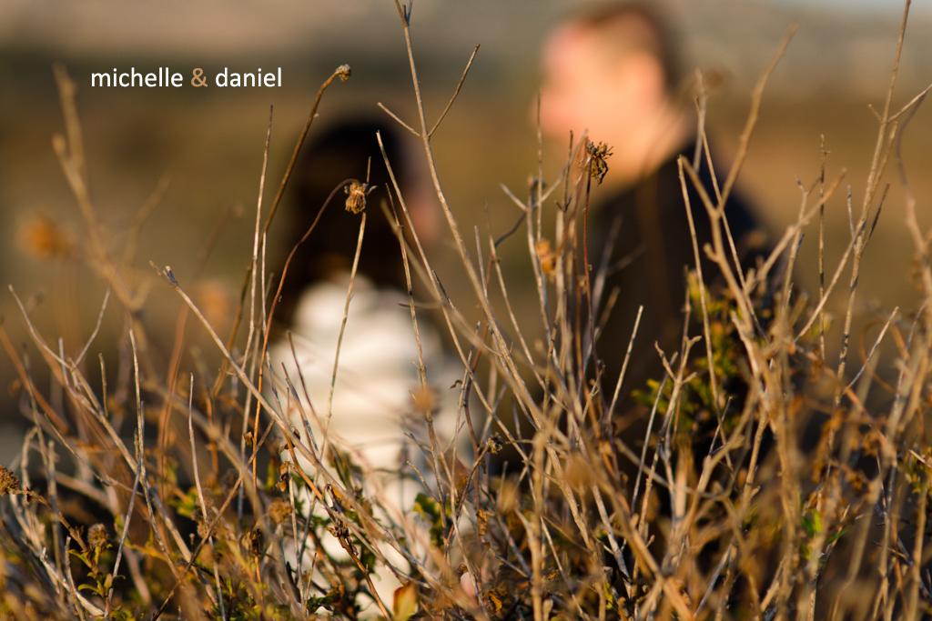 rlp-engagement-Michelle+Daniel-571-2.jpg