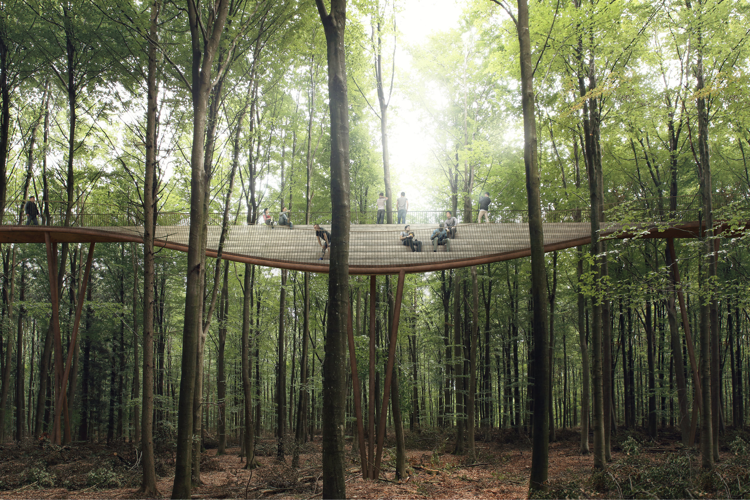 One of the features on the treetop walk: An amphi seating pocket
