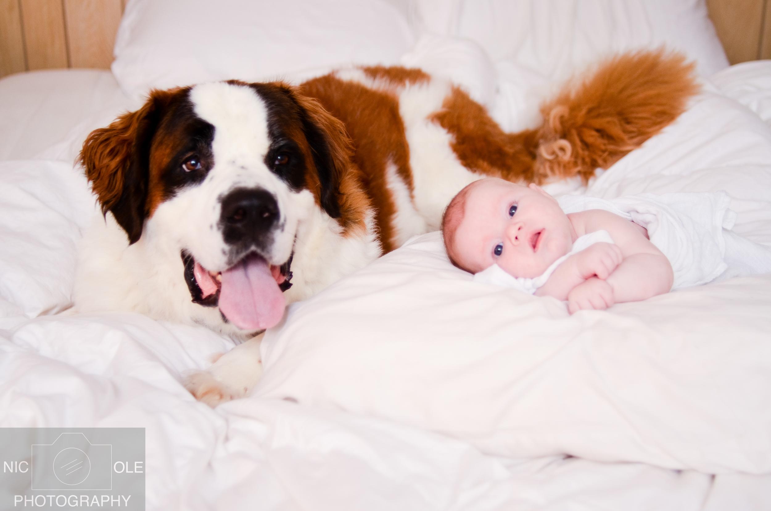 Baby Oliver-NIC-OLE Photography--8.jpg
