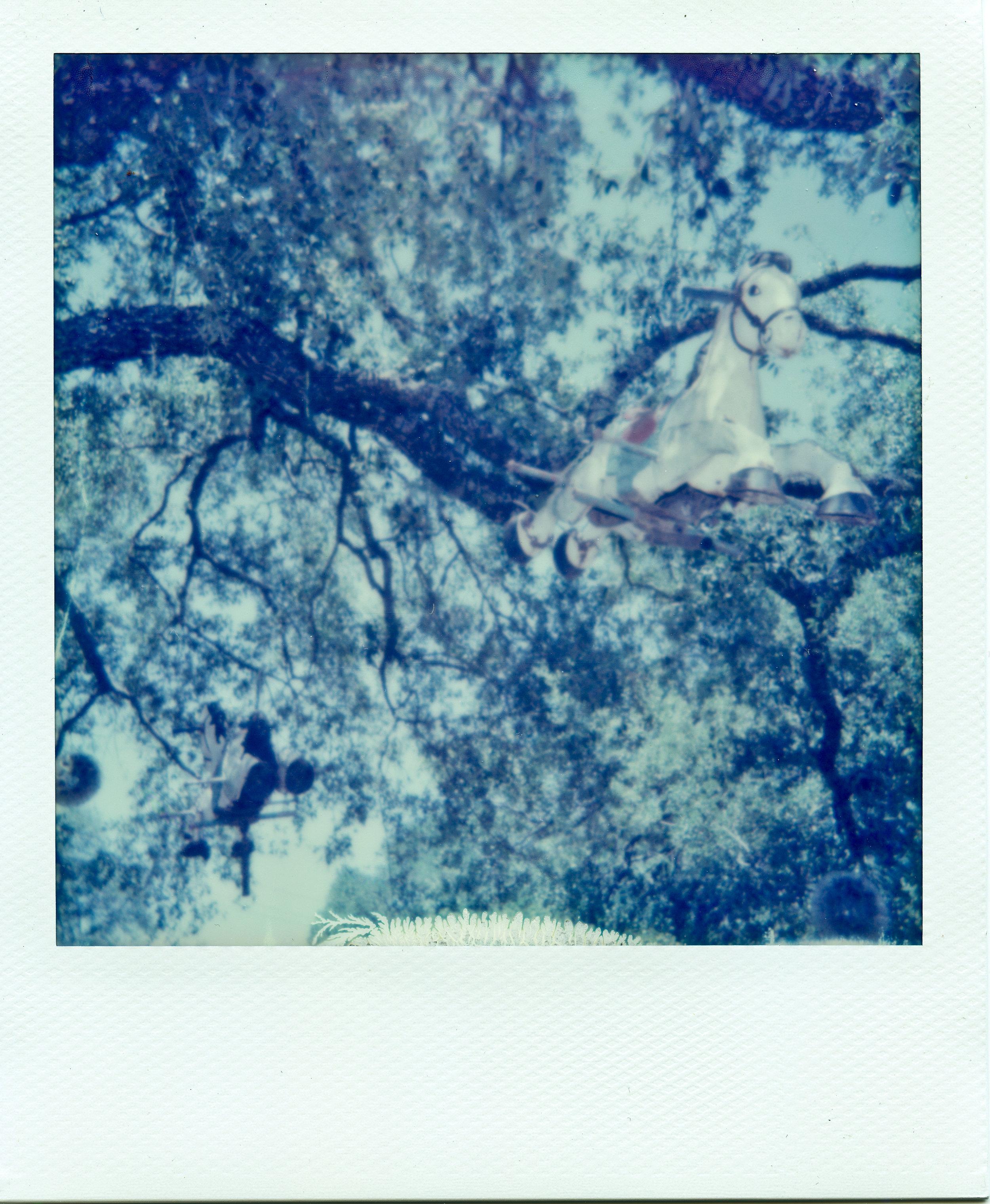 Polaroid ATX007-2.jpg