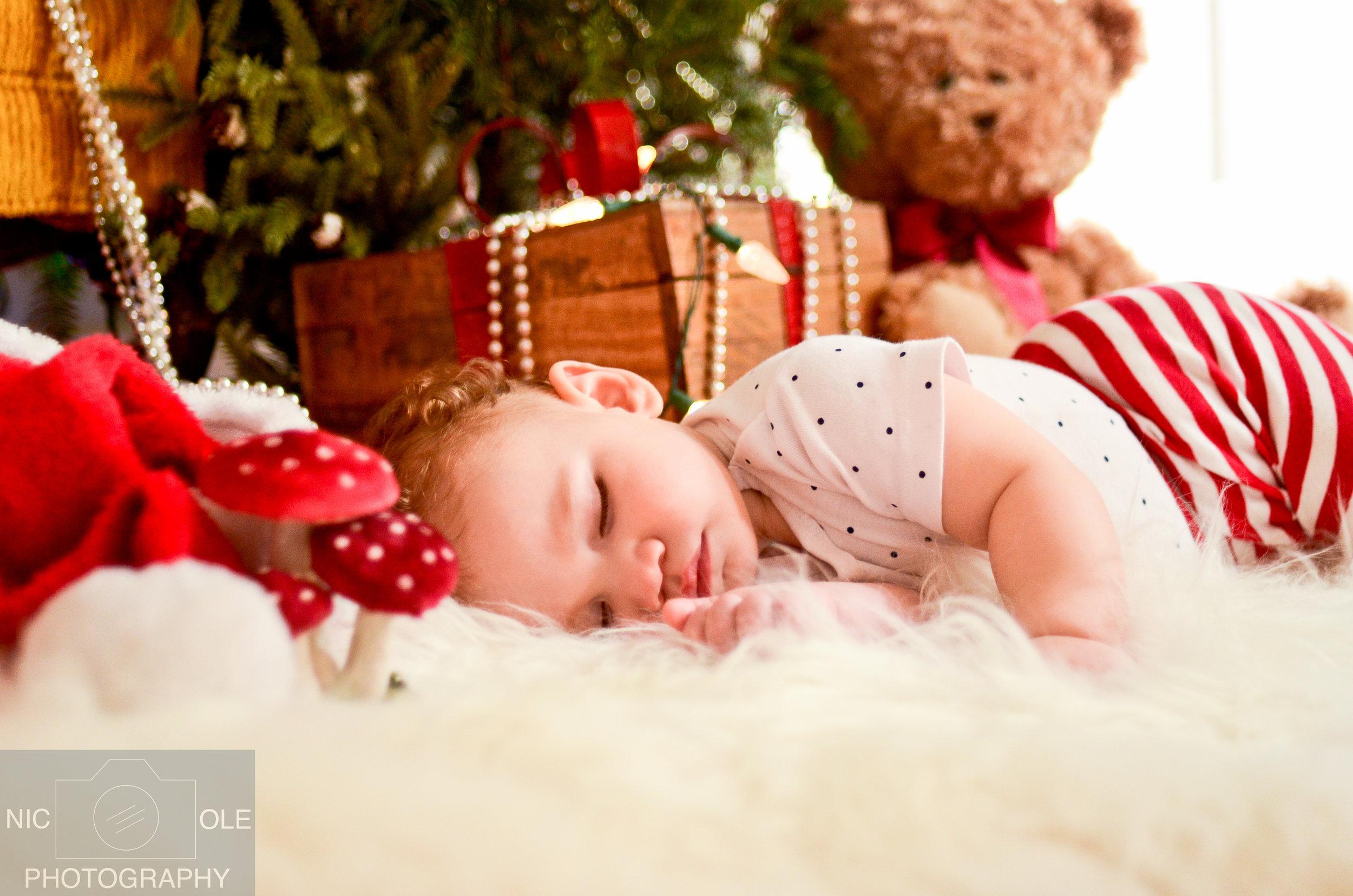 O&Z Christmas Photos- Nic.Ole Photography-8.jpg