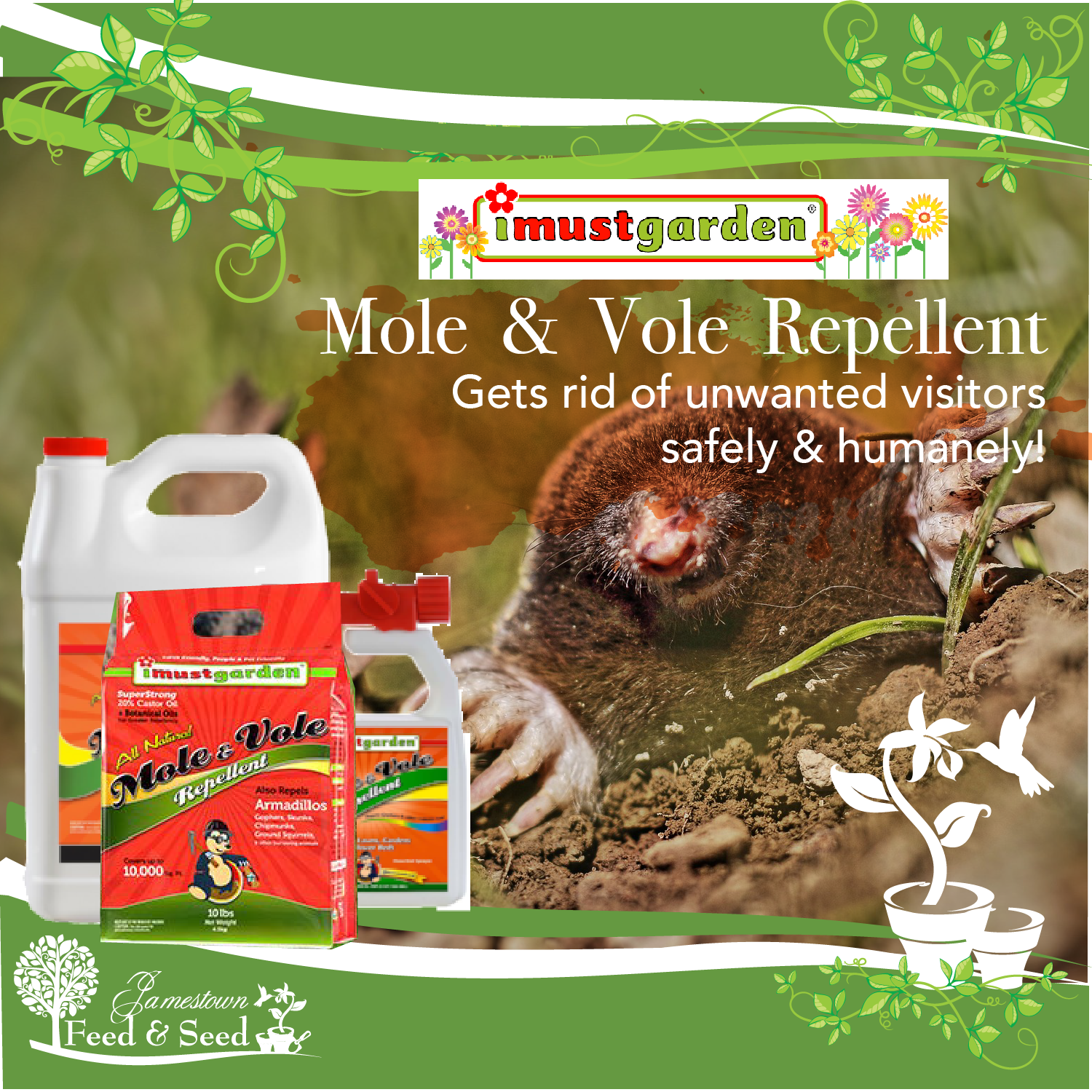 img mole and vole-01-01.png