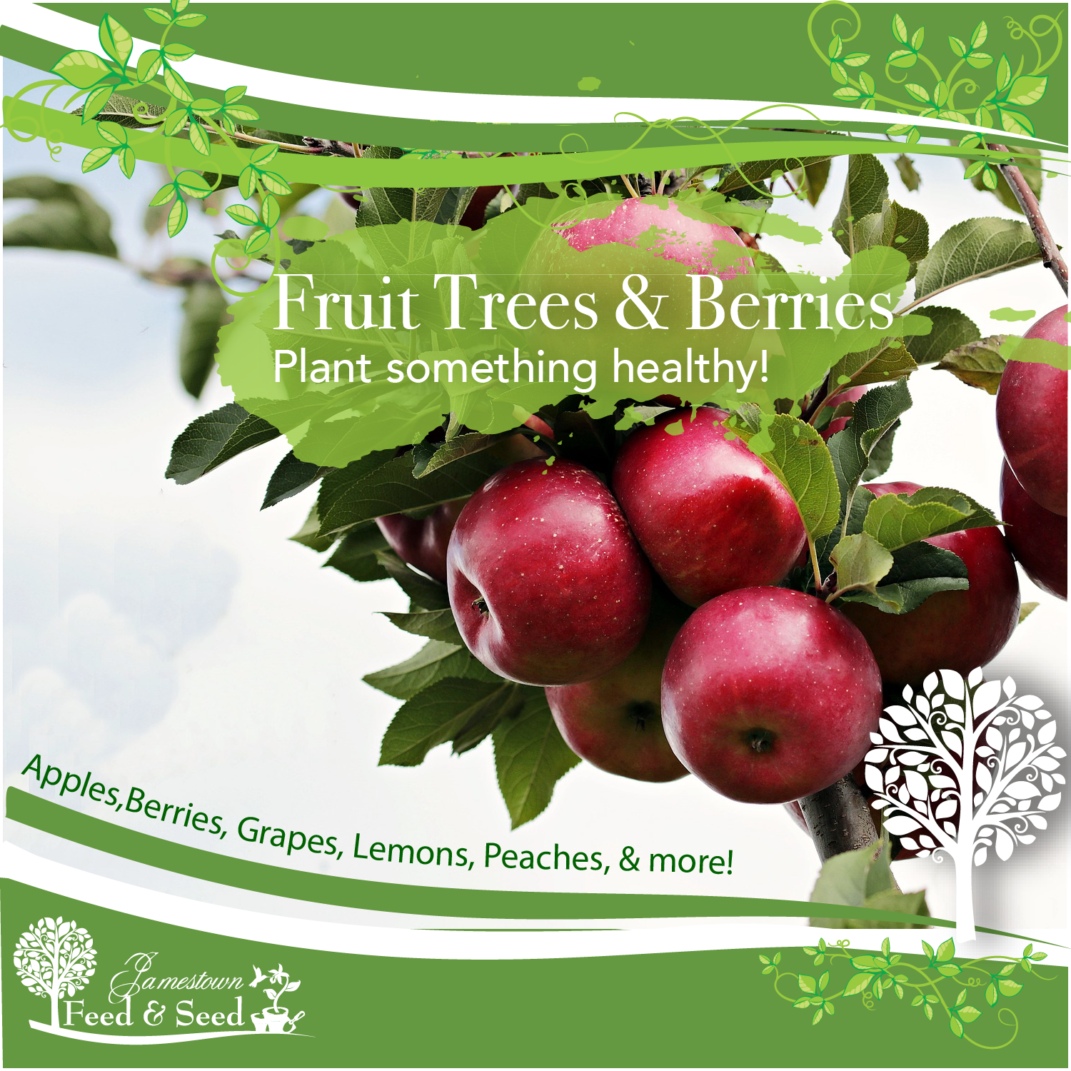 fruit trees ad-01.png