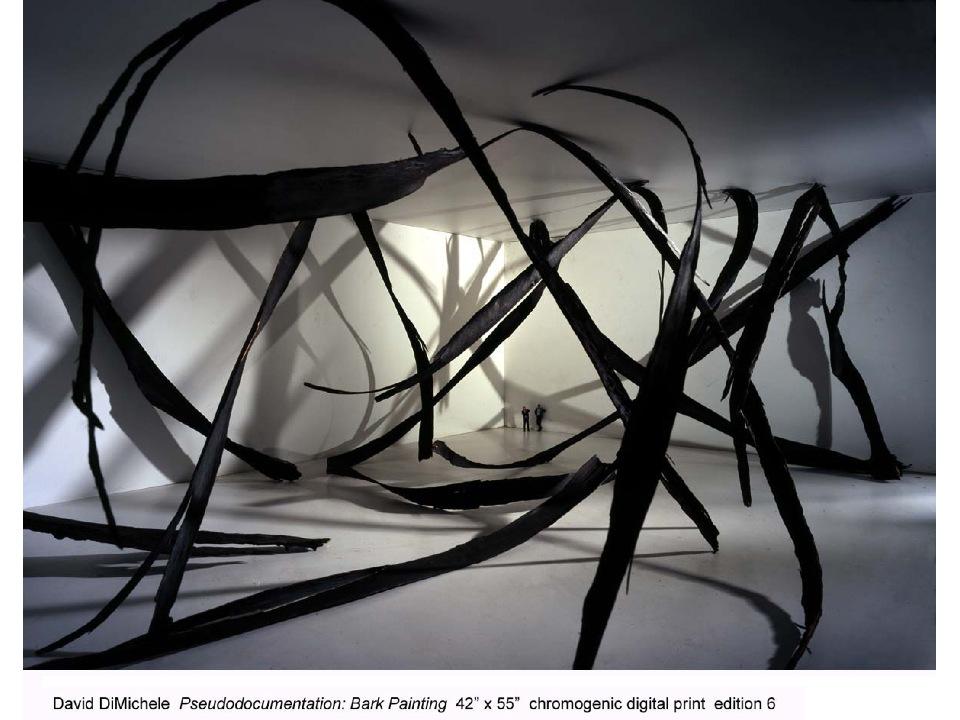 David DiMichele.pseudodocumentation, Bark painting.2006 lighjet print.jpg