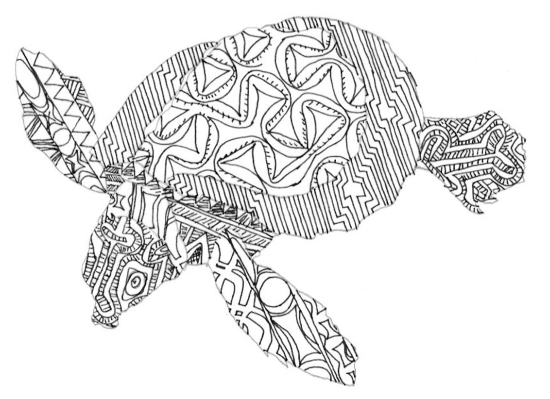 RosiePerl.Turtle.drawing1.2.jpg