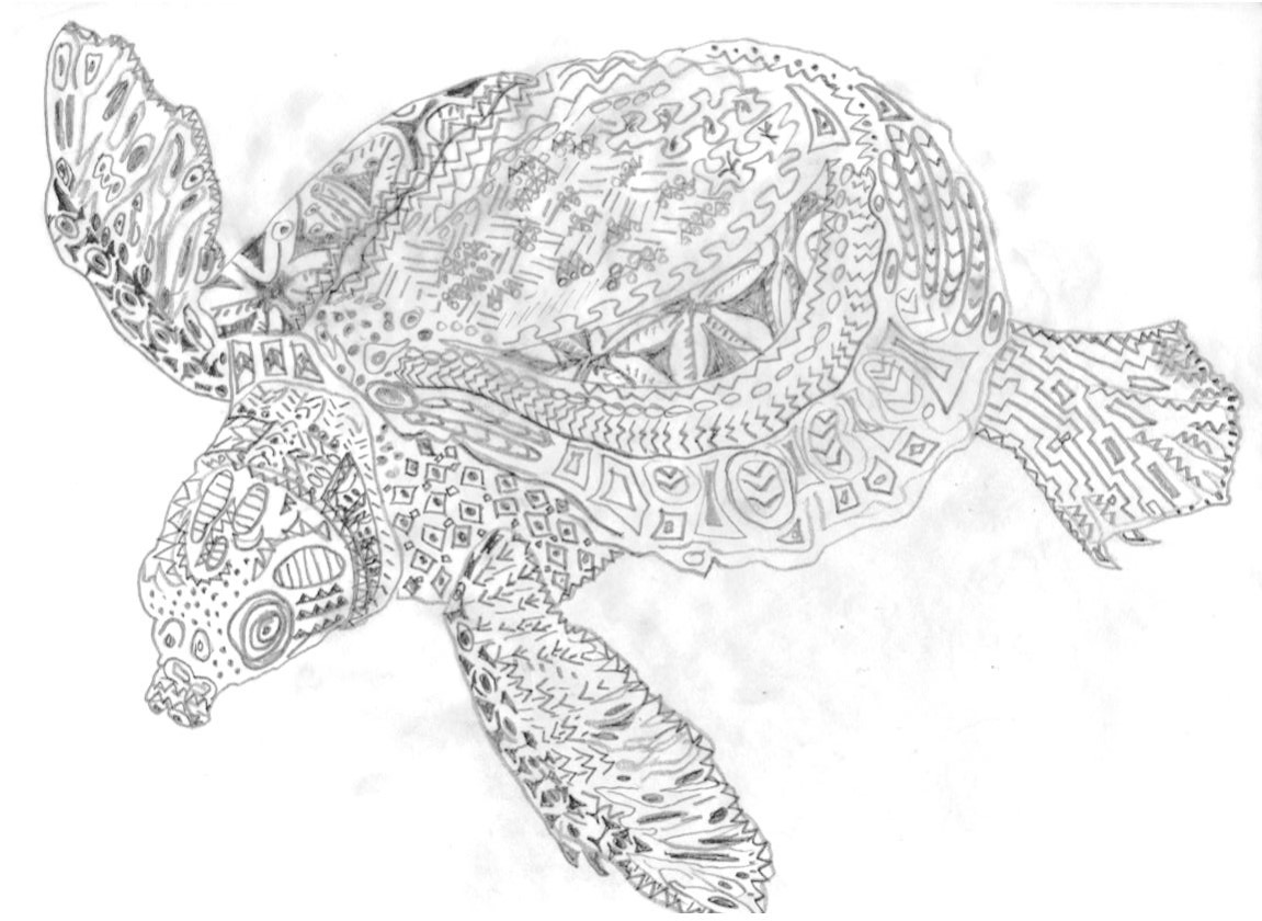 RosiePerl.Turtle.drawing1.jpg