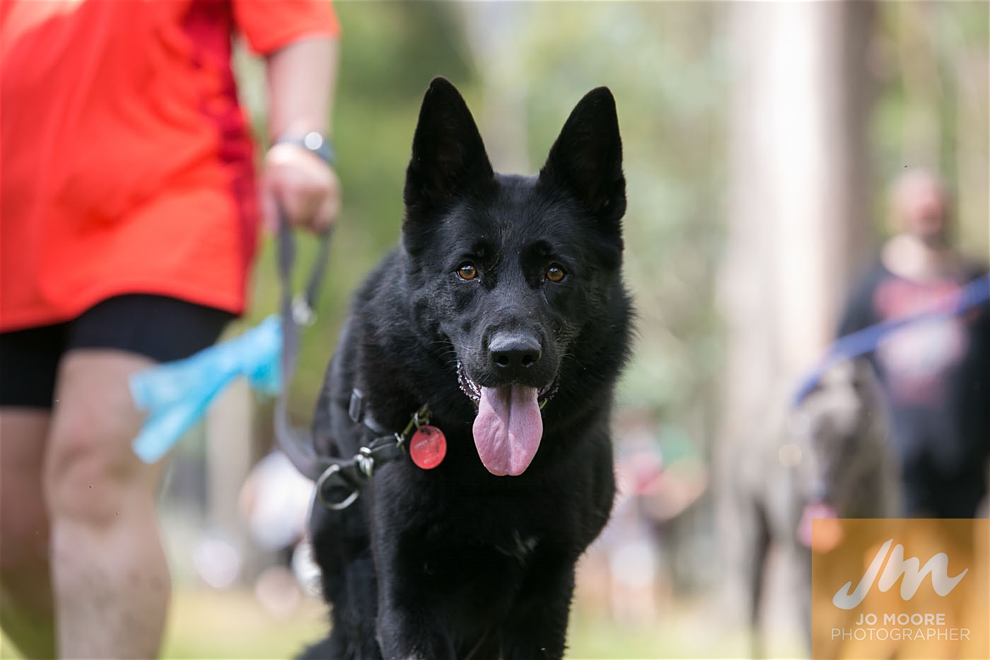 Paws in the Park-96.jpg