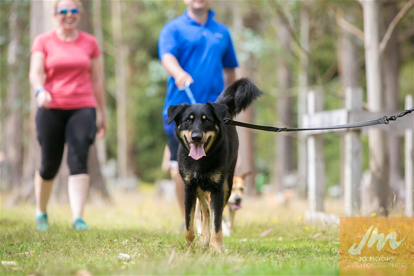 Paws in the Park-112.jpg