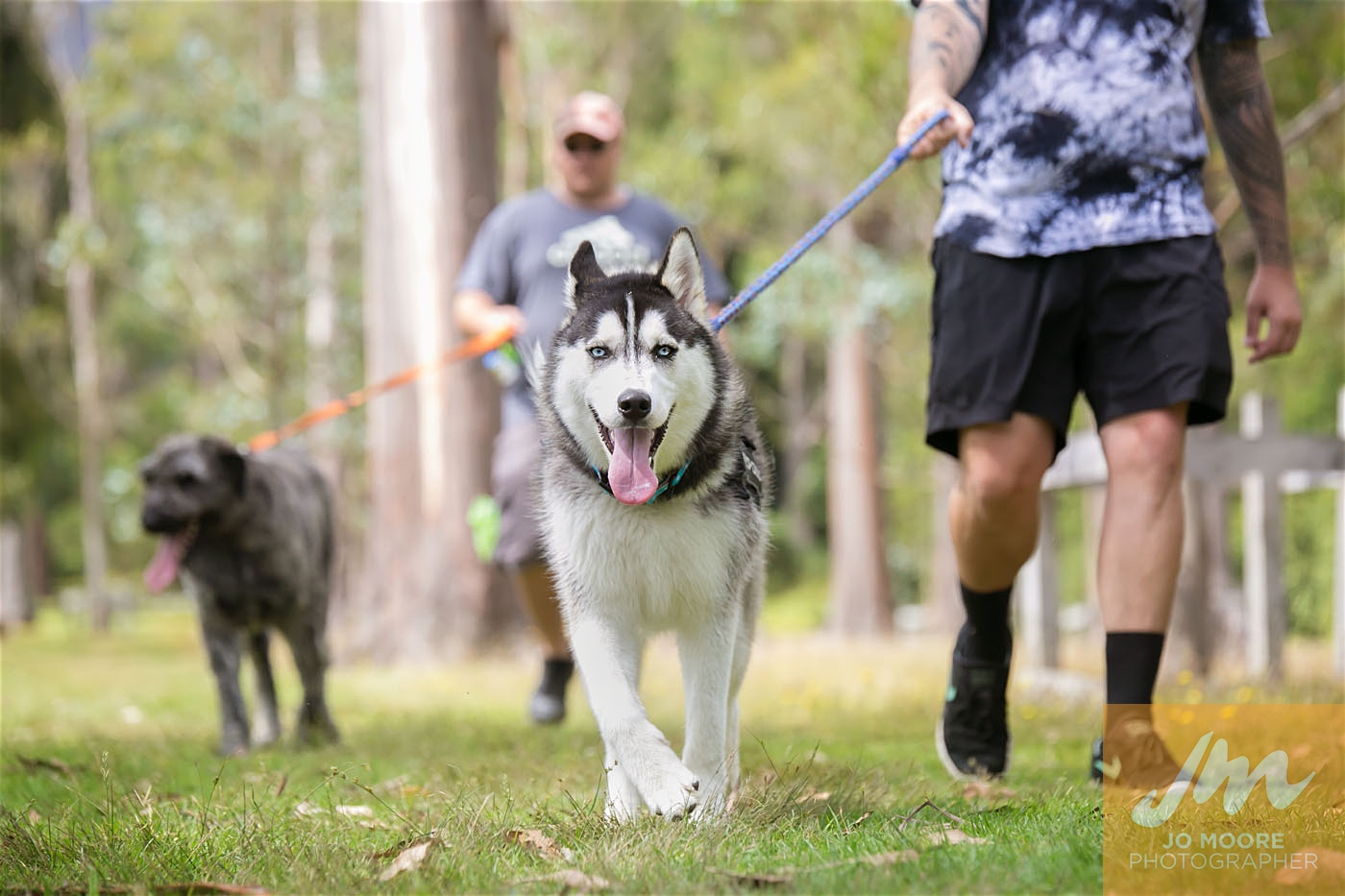 Paws in the Park-121.jpg