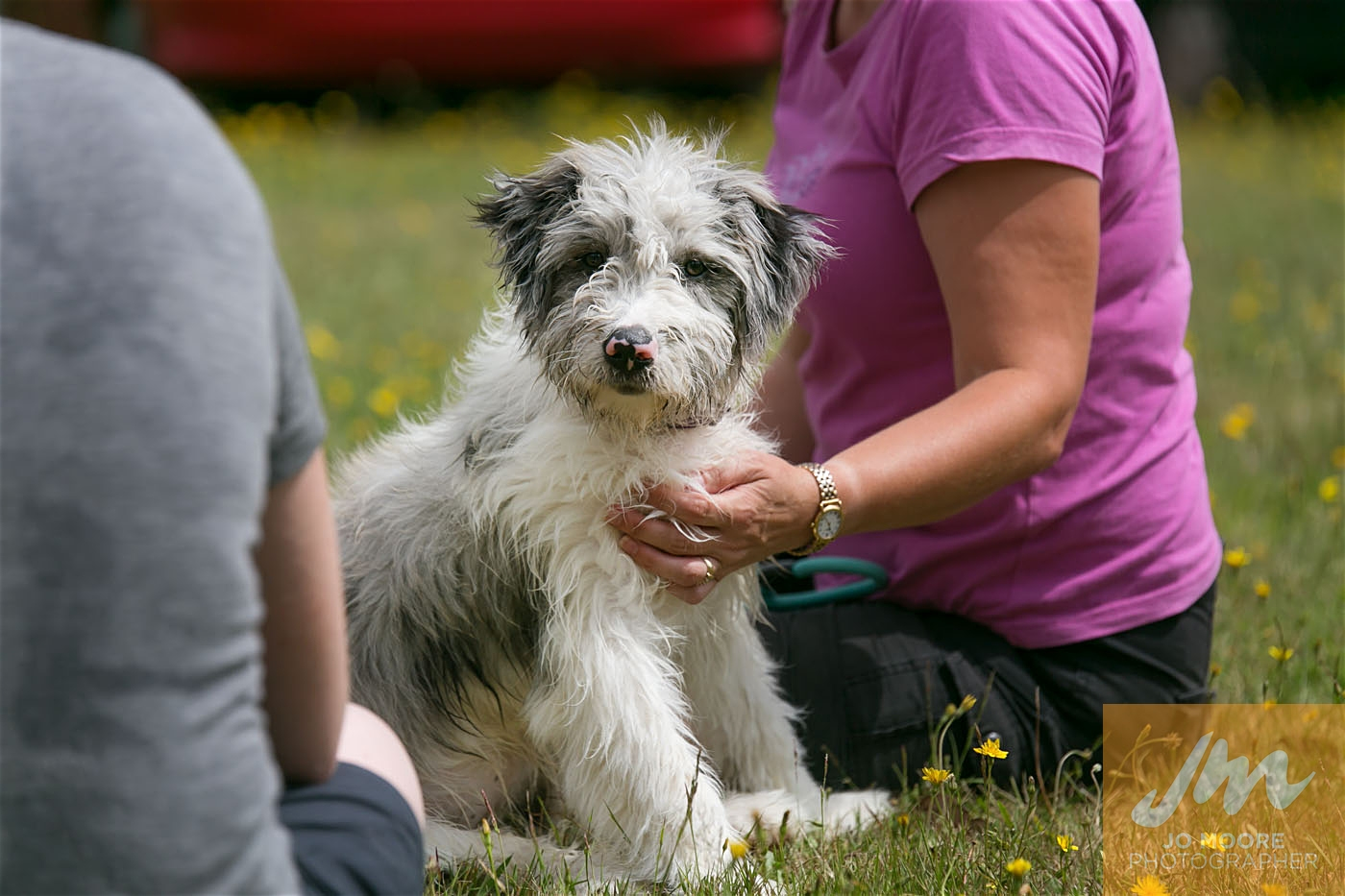 Paws in the Park-145.jpg