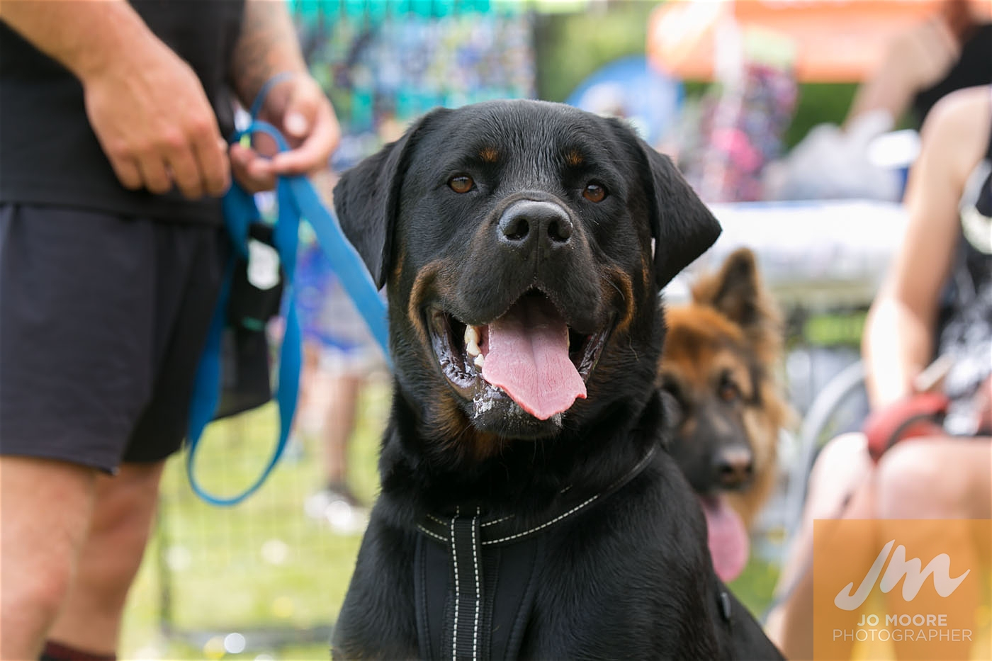 Paws in the Park-149.jpg