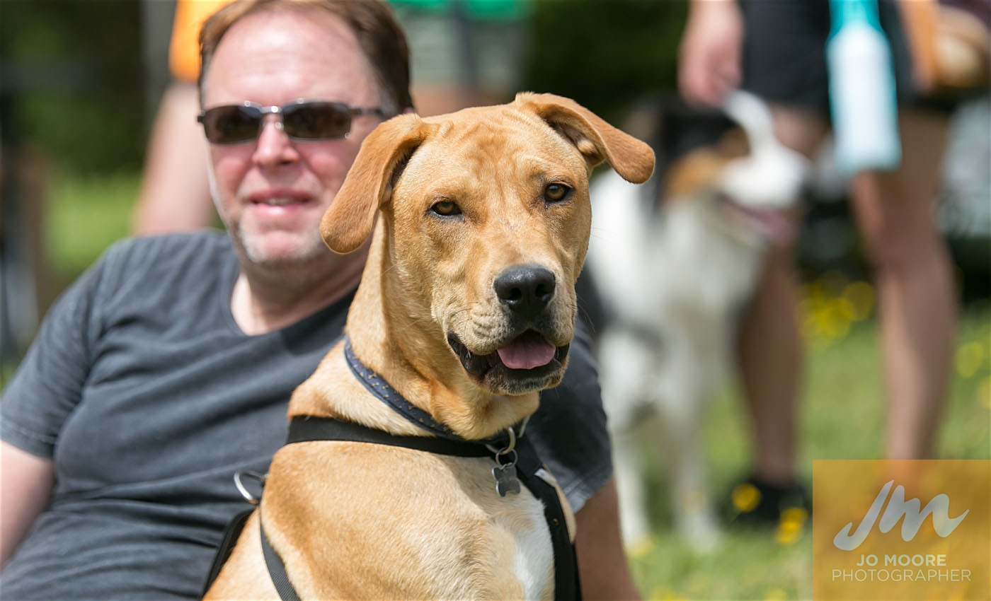 Paws in the Park-161.jpg