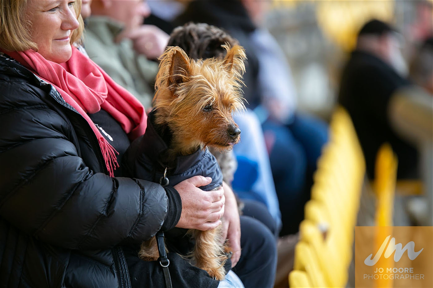 Pups in the Park-73.jpg