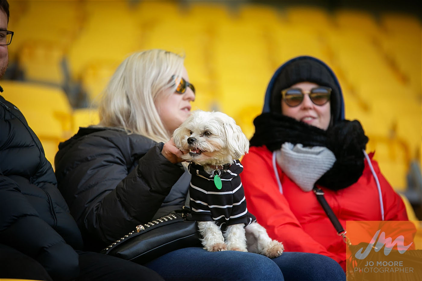 Pups in the Park-94.jpg