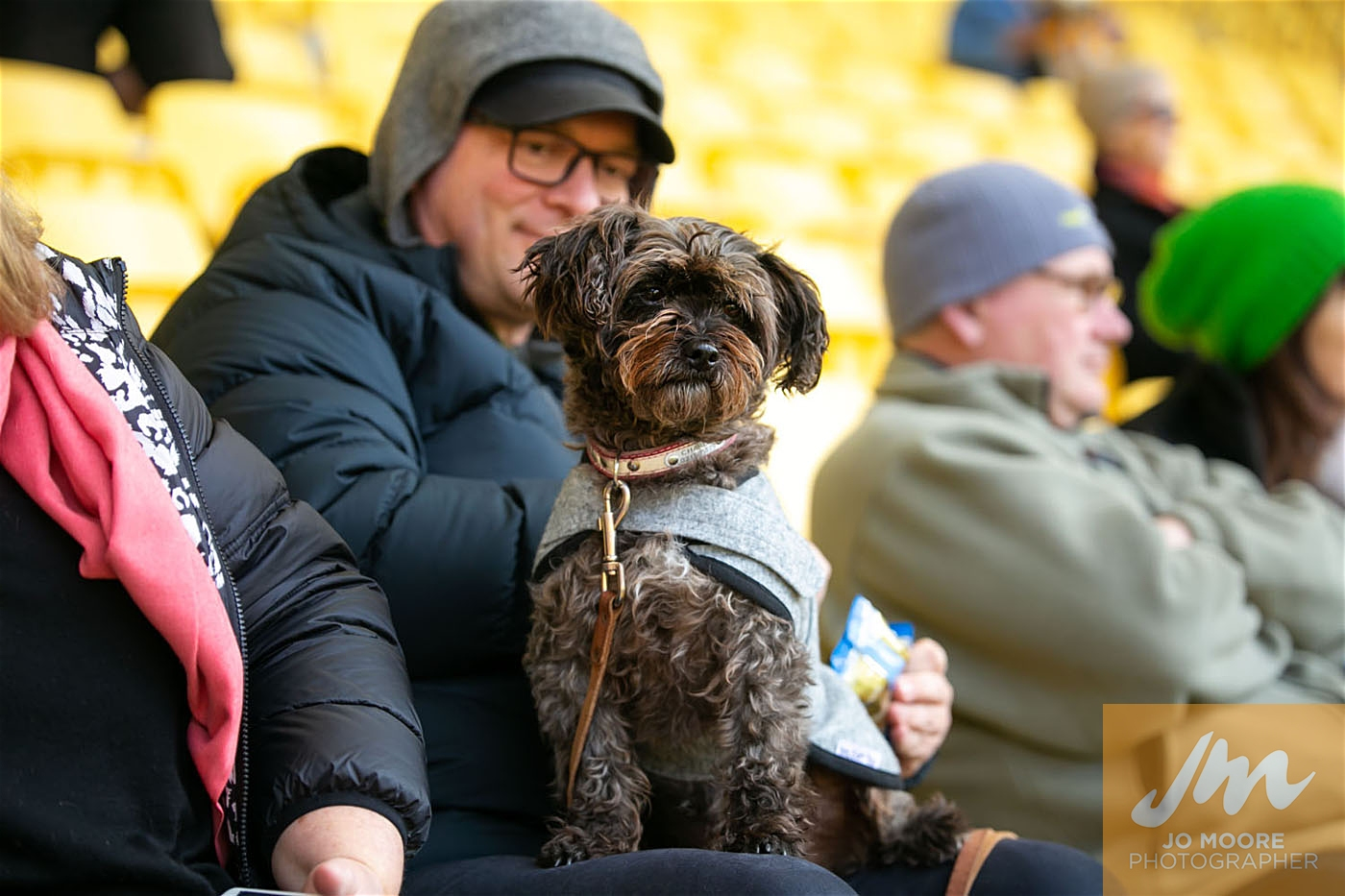 Pups in the Park-93.jpg