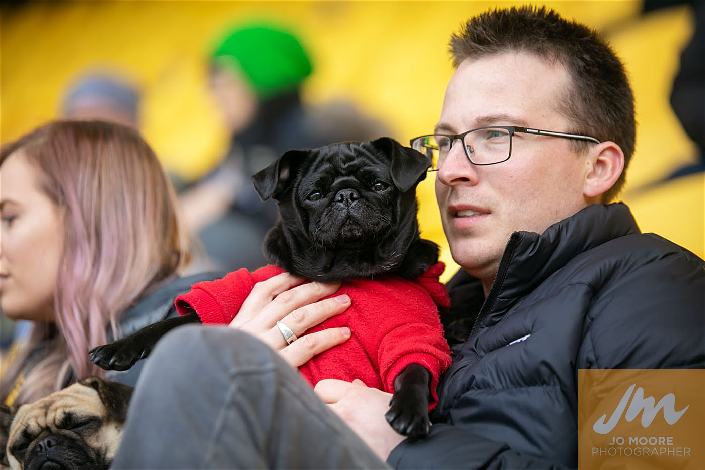 Pups in the Park-102.jpg