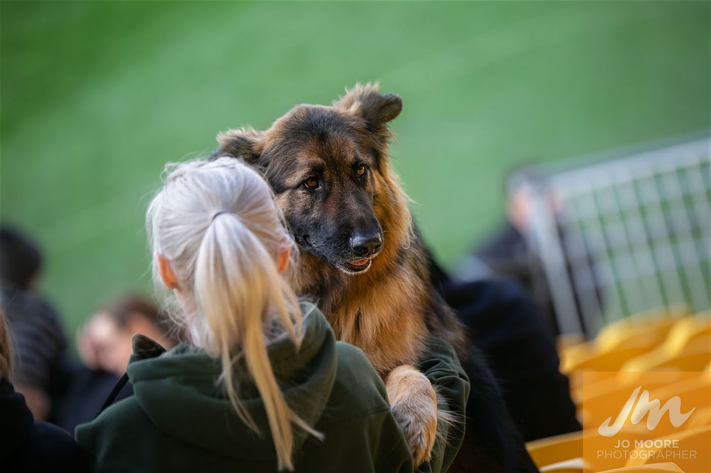 Pups in the Park-192.jpg