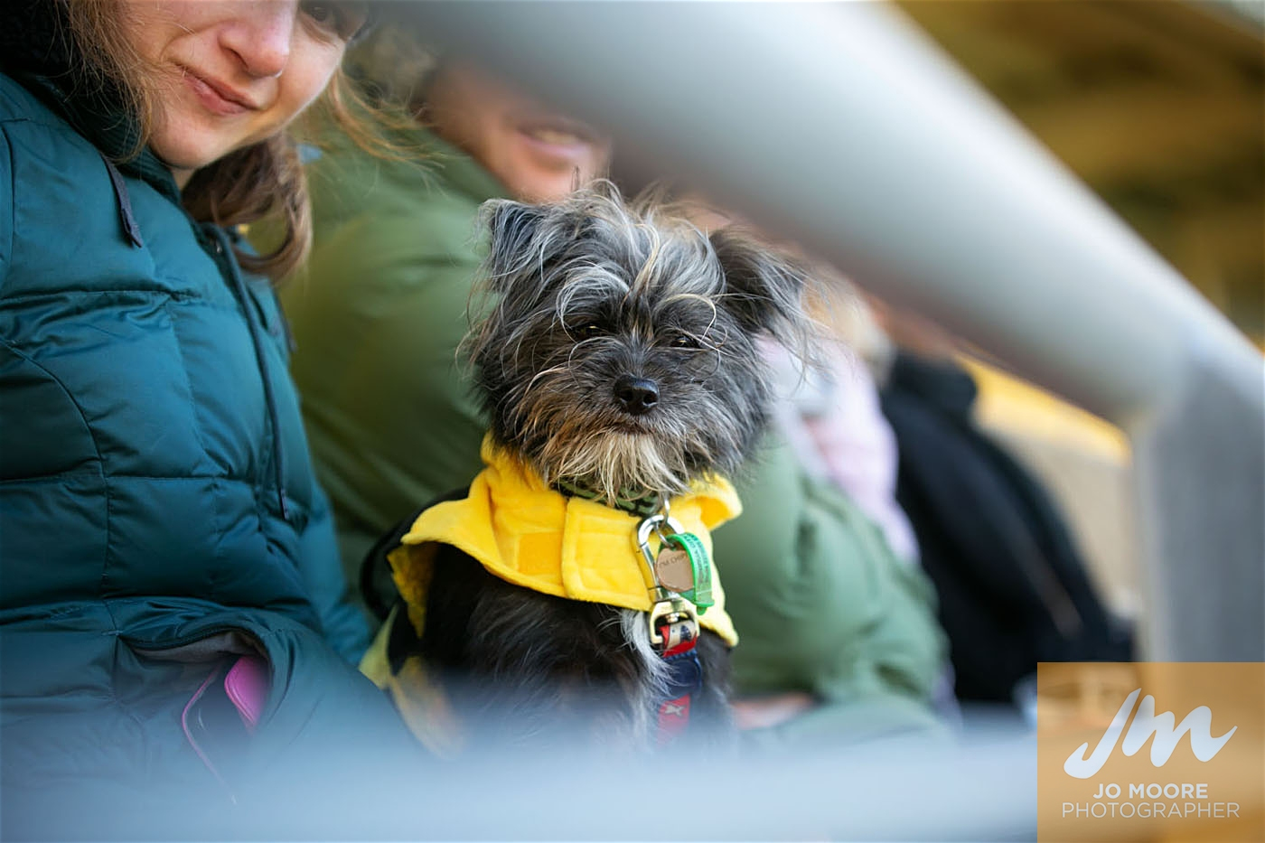 Pups in the Park-195.jpg