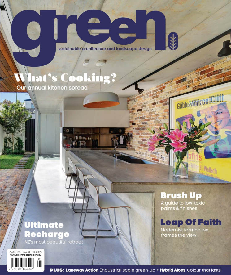 green magazine cover.jpg