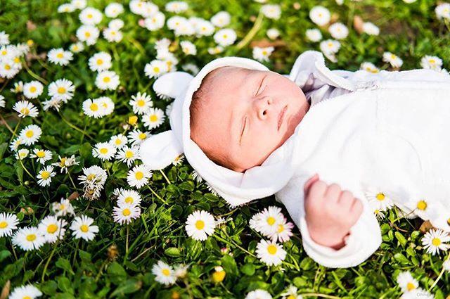 Spring.  #beautiful #light #sunlight #fujifilm #fujifilmxpro1 #xpro1 #xf35 #xf35f2 #xf35mm #fuji #vasonapark #vasonaparklights #chasinglight #bokeh #infant #baby #babyJ #newborn #babiesofinstagram #newbornphotography #babyphotography #vasona #vasonapark #spring #springbaby #flowers #springflowers