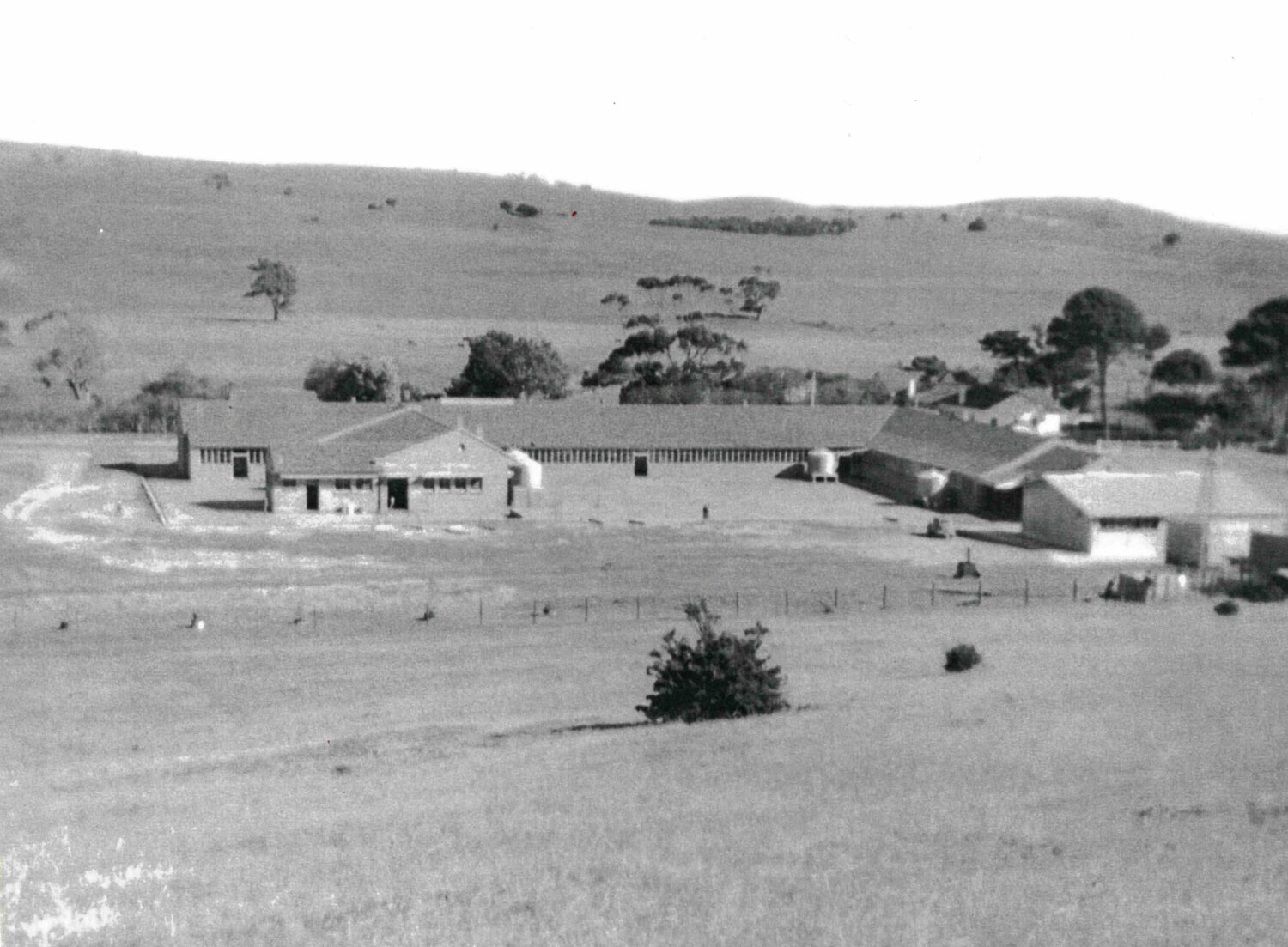 Looking at the back of the school in 1956