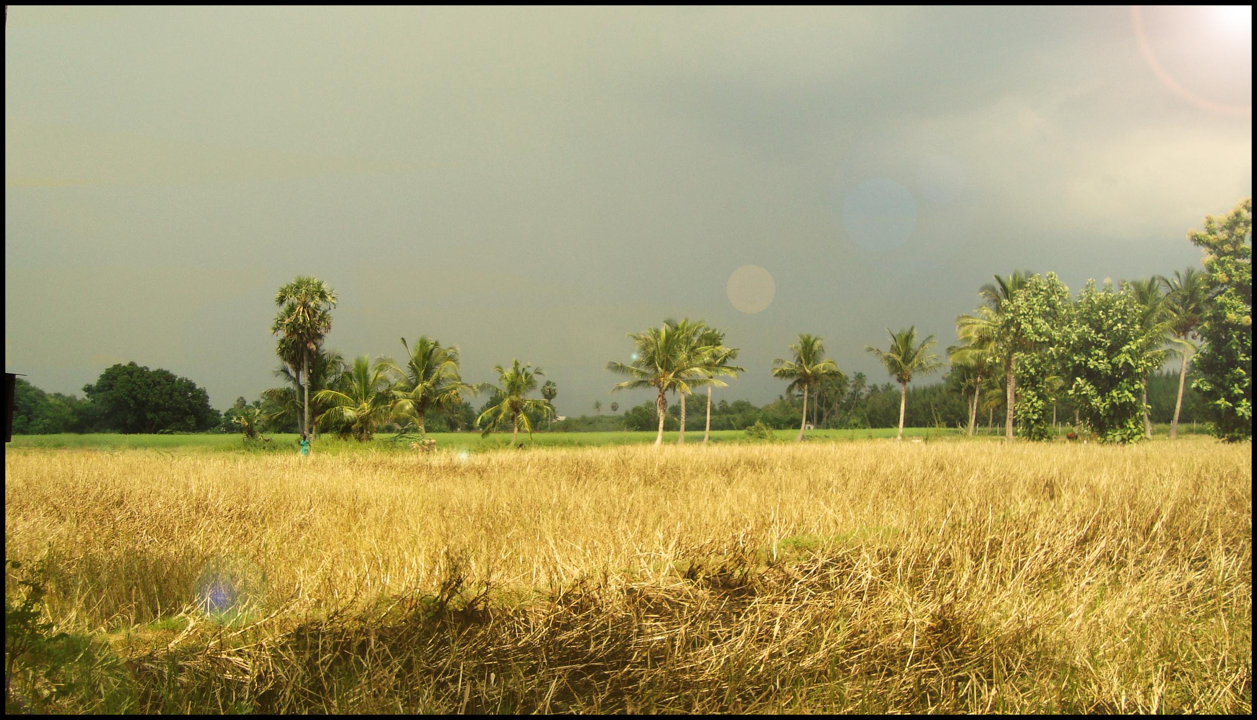 jordbrukpage.jpg
