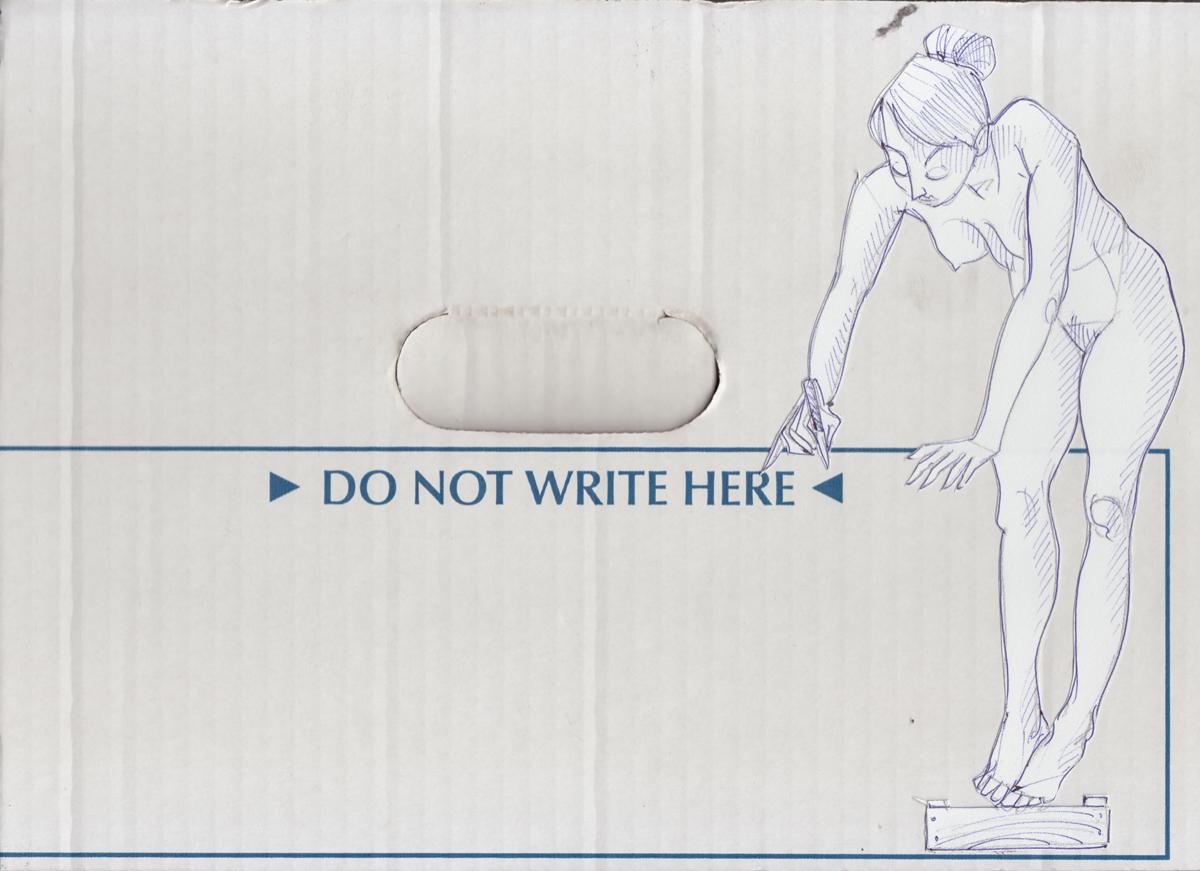 ballpoint on paper, mounted on cardboard
