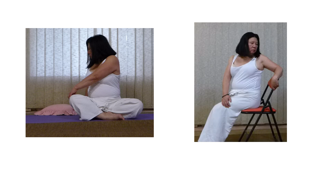 Seated twist (static version)