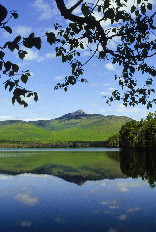 Mount Chocorua Summer Day