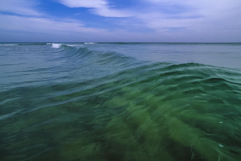 The Ocean Wilderness