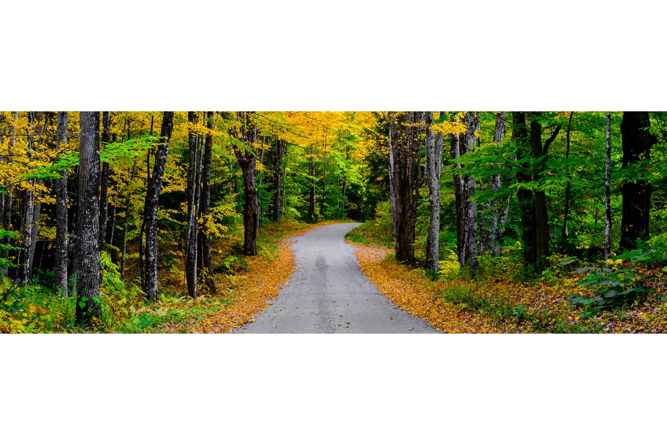 Cloudland Road in Autumn