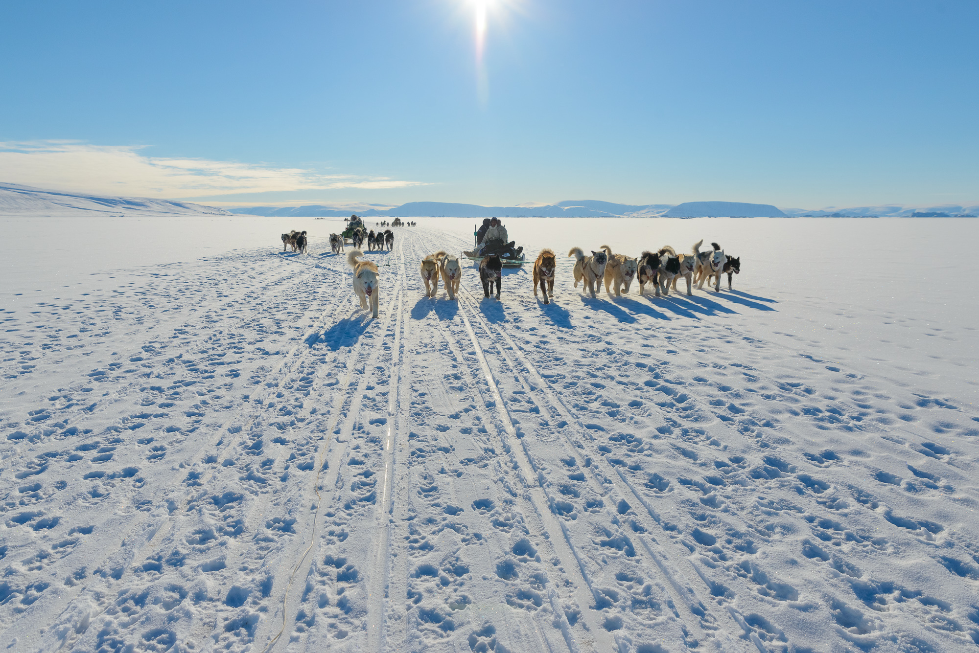 Inuit Hunters on the Move