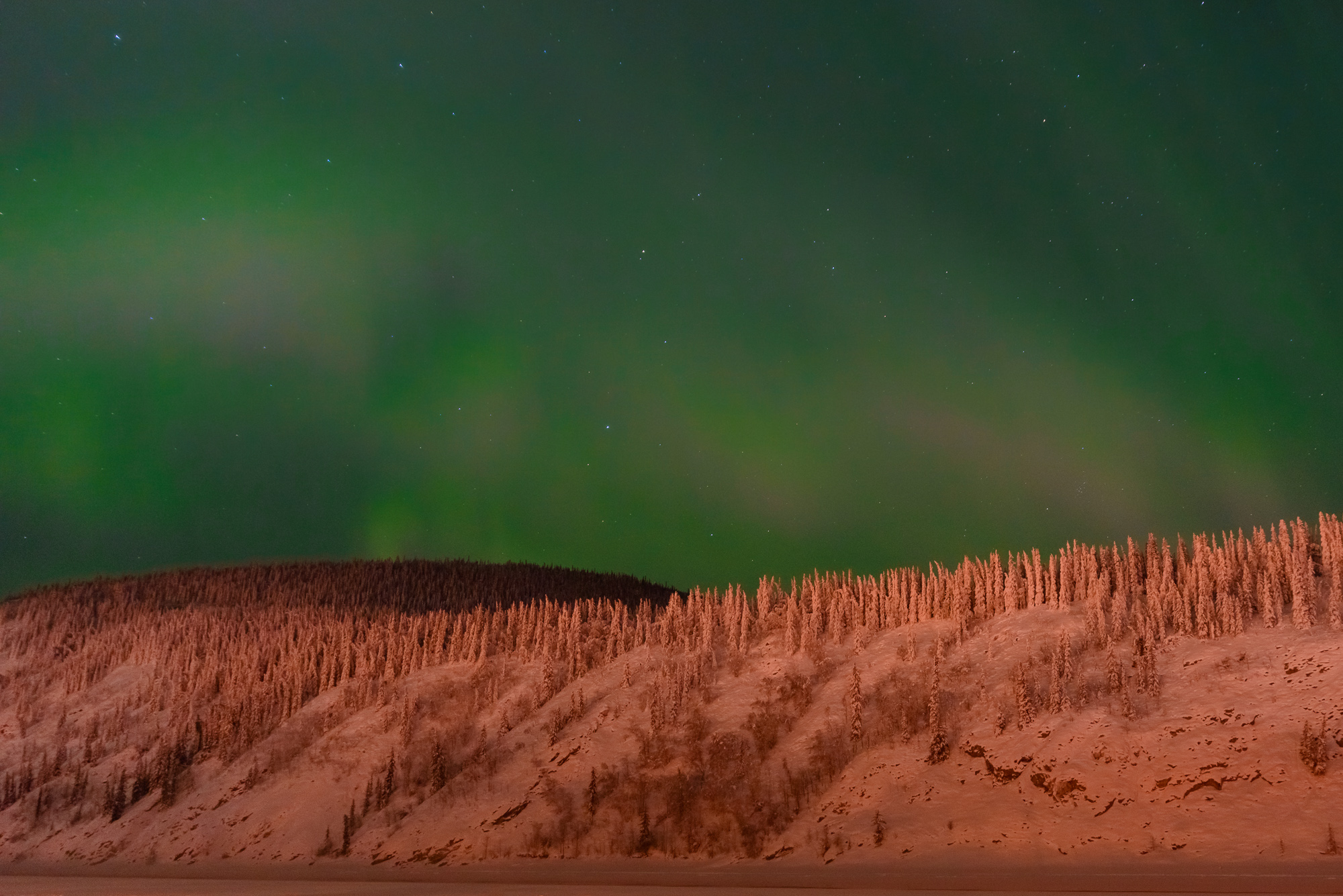 Northern Lights Above the Yukon River at Thirty Below Zero