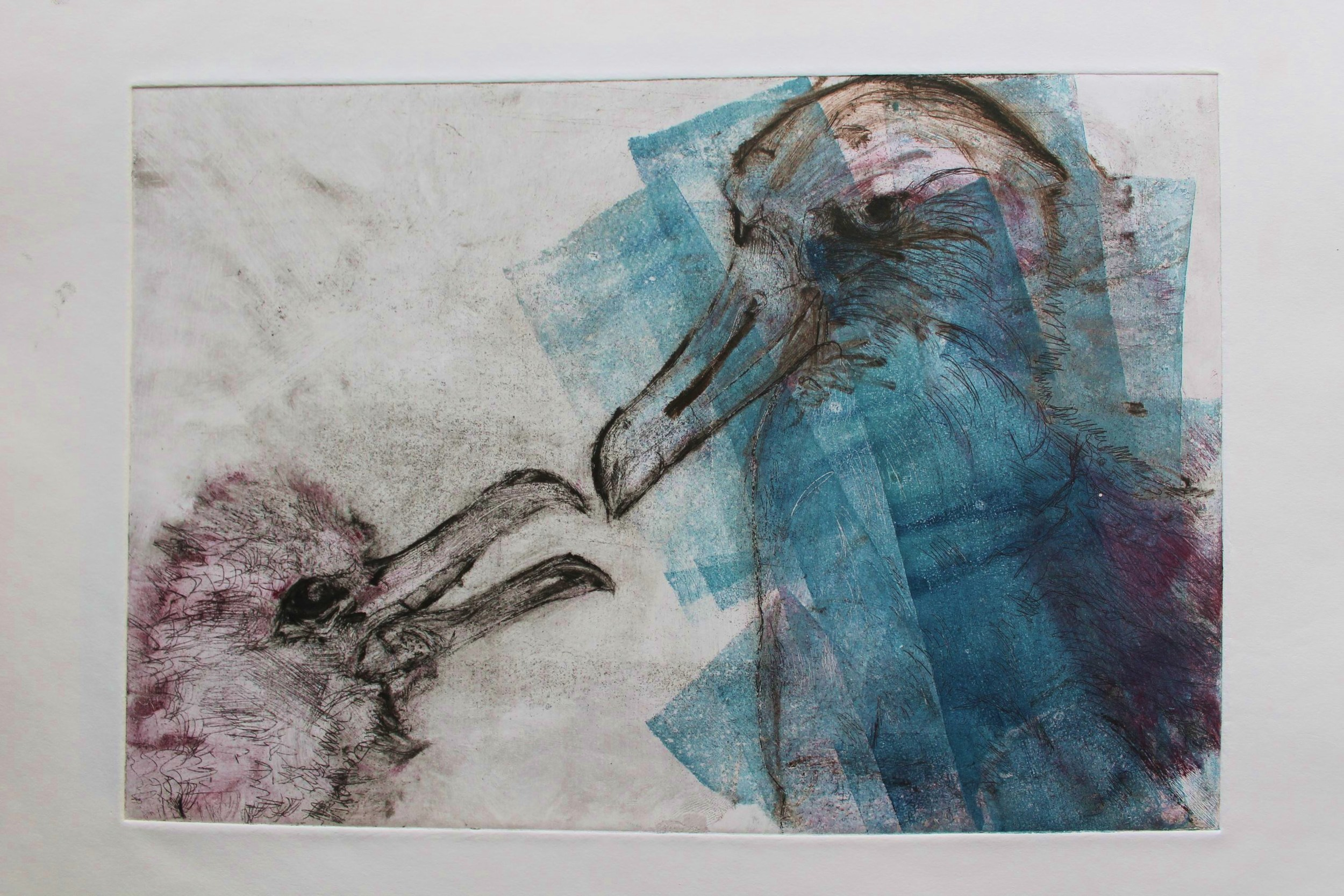 albatrossprint4.JPG