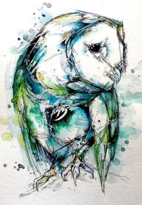 Tyto  © Abby Diamond  finchfight.tumblr.com
