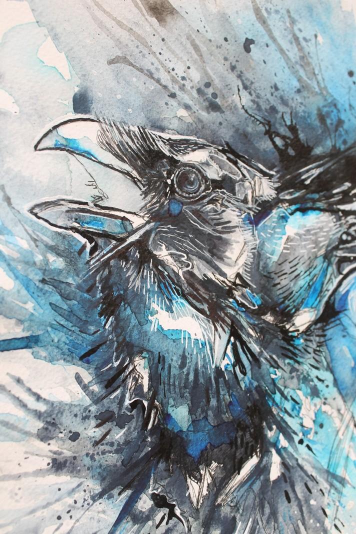 Raven13.JPG