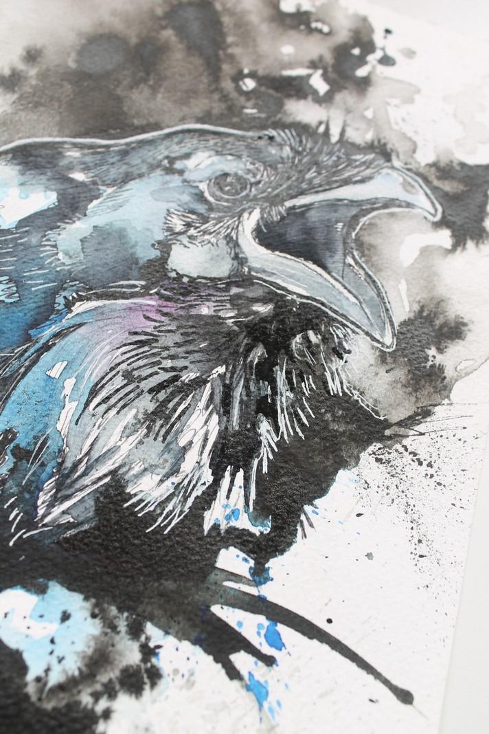 Raven9.JPG