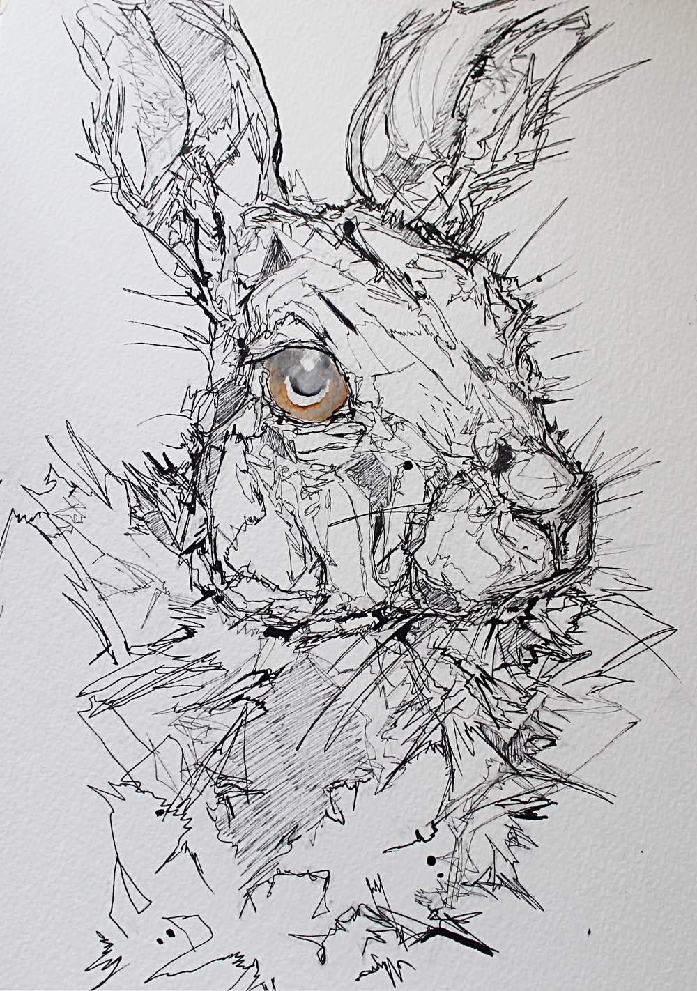 rabbit-ink-1.jpg
