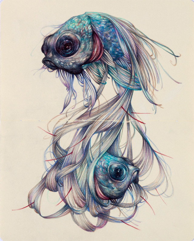 The Hairy Fish  © Marco Mazzoni  marcomazzoni.tumblr.com