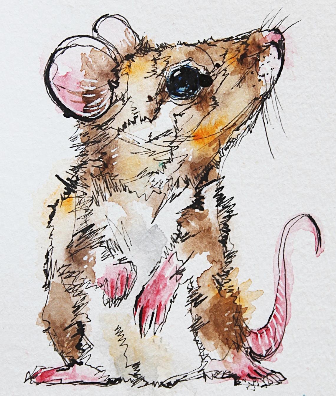 tiny-mouse-dec-18.jpg